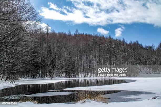 mishaga-ike winter view - 雪 stock pictures, royalty-free photos & images