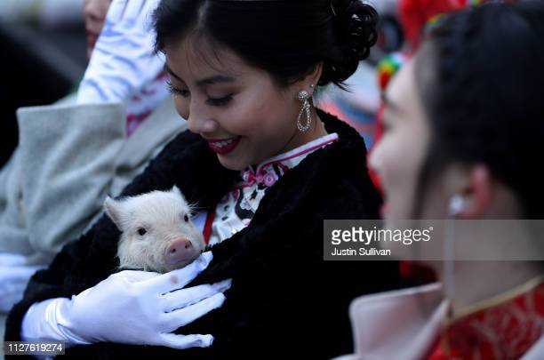 Miss Chinatown USA Jasmine Lee holds a piglet while ushering in Chinese New Year on February 05 2019 in San Francisco California San Francisco city...