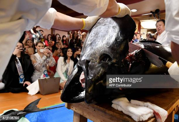 Miss International Beauty Pageant contestants watch a 250kilogram Tuna being prepared at the SushiZanmai restaurant near the Tsukiji fish market in...