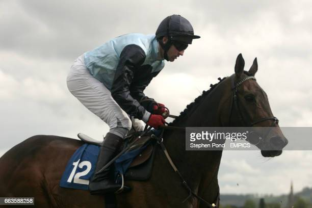 Miss Ladybird ridden by Roderick Greene going to post for the Rose Lion In Bromyard Novices' Handicap Hurdle