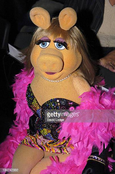 miss piggy pictures and photos getty images