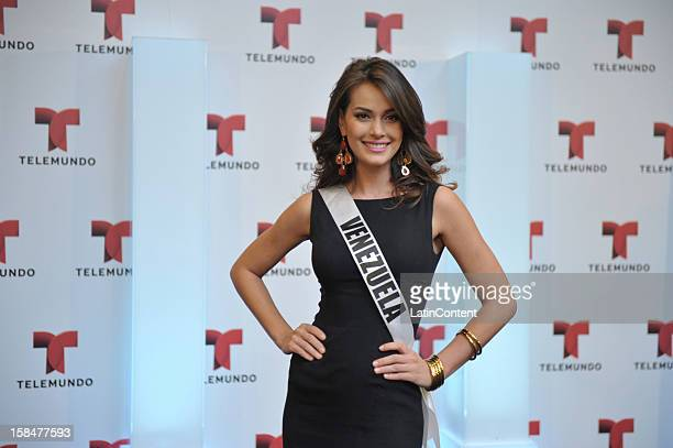 Miss Universe contestant Irene Sofía Esser Quintero of Venezuela poses for a picture during a photo shoot on December 17 2012 at Planet Hollywood in...