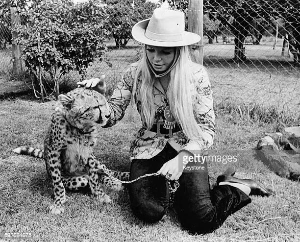 Miss World winner Eva RueberStaier playing with a cheetah during a visit to the Nairobi Animal Orphanage during a tour of Kenya May 22nd 1970