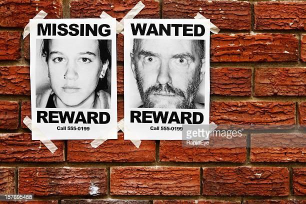 Il manque des informations et des affiches scellées pour mur de briques