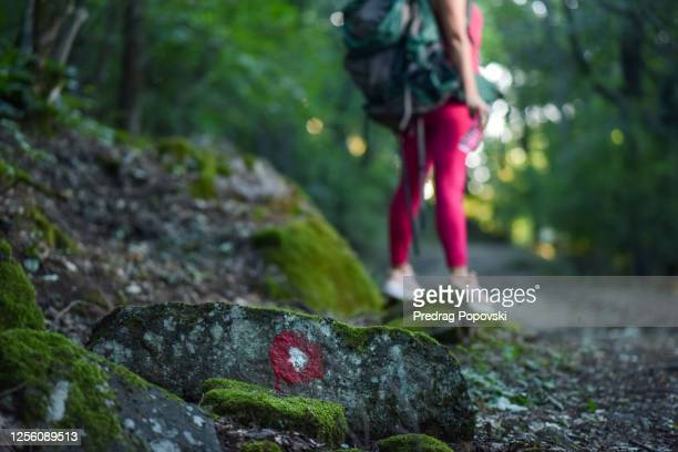 missing person , hiker lost in forest - murder victim stock pictures, royalty-free photos & images
