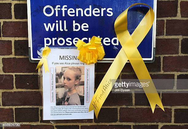A missing persons poster requesting for information following the disappearance of 14yearold Alice Gross from Hanwell is accompanied by yellow...