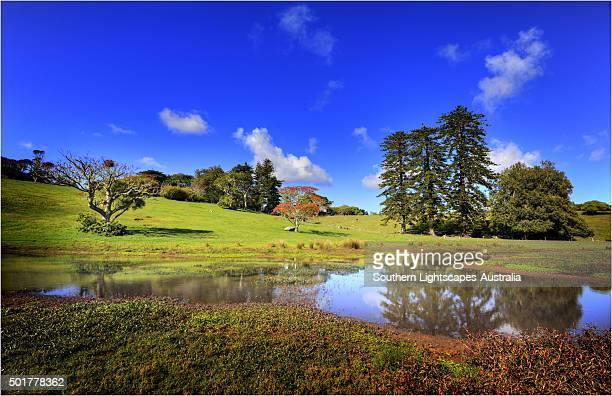 Mission valley scene, Norfolk Island