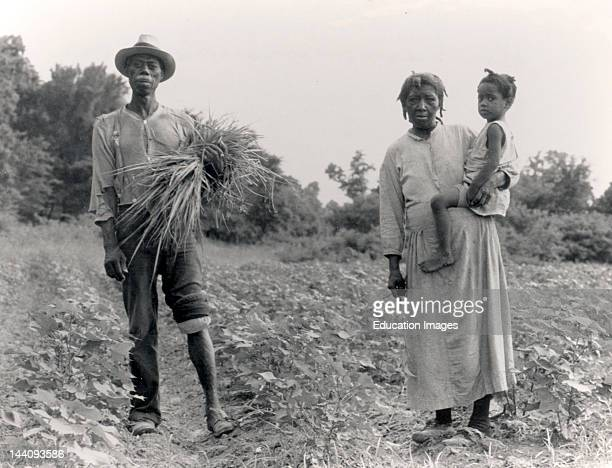 Mississippi Negro Family Who Live On A Cotton Patch Near Vicksburg, 1936 July, Photographer Dorothea Lange.