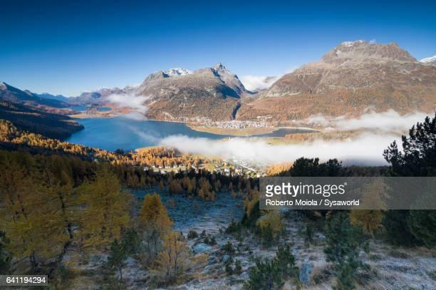 Mist and autumn colors Surlej Switzerland