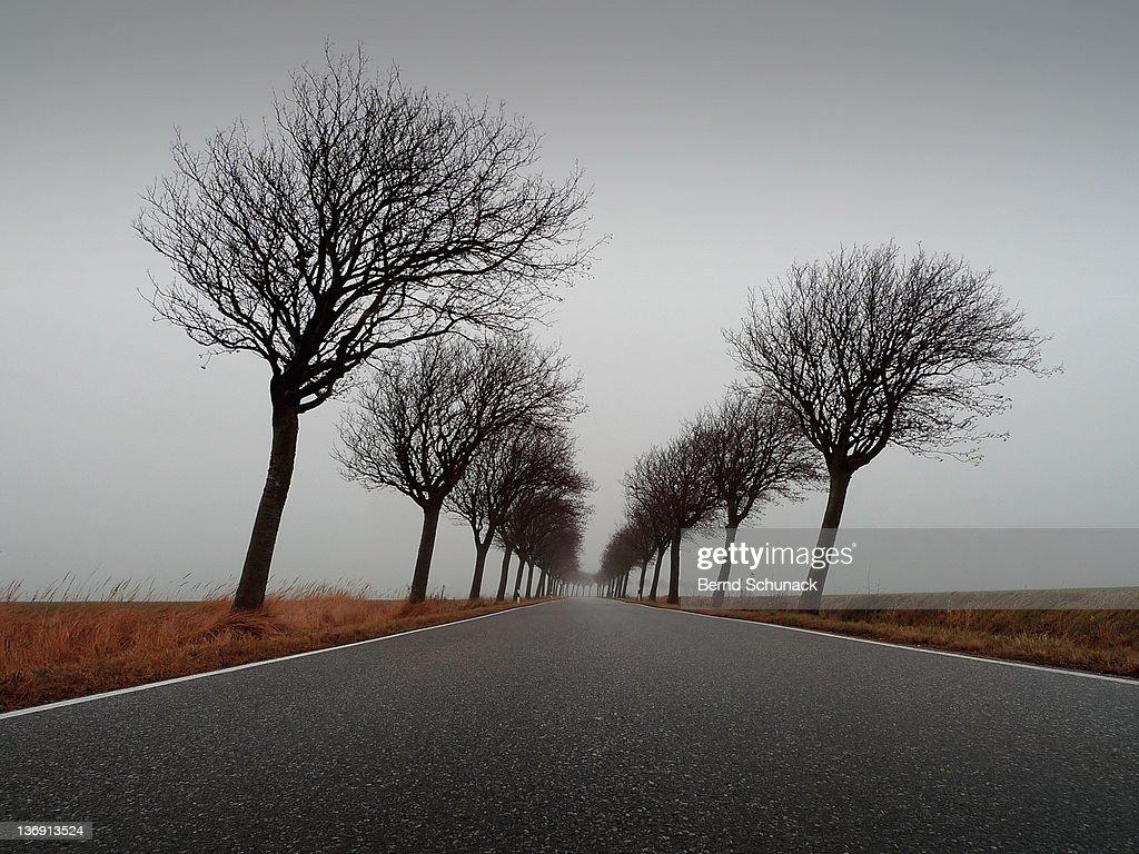 Mist [explore] : Stock-Foto