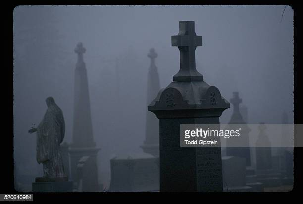 mist in cedar grove cemetery - gipstein stock pictures, royalty-free photos & images