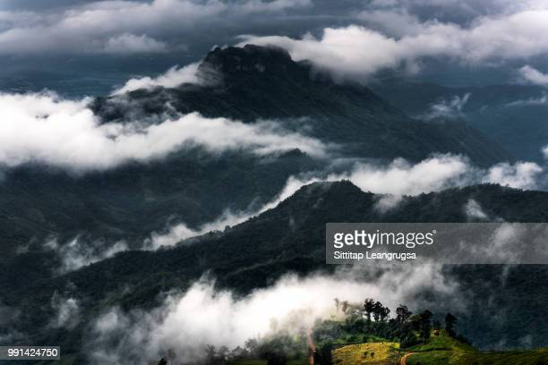 mist in phu thap boek - boek stock pictures, royalty-free photos & images