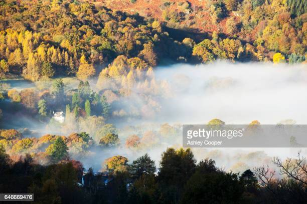 mist in the vale of rydal, ambleside, lake district, uk. - loughrigg fells - fotografias e filmes do acervo