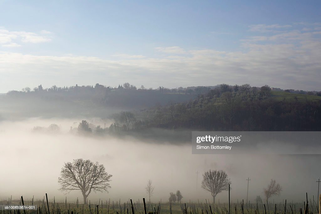 Mist in valley : Foto stock