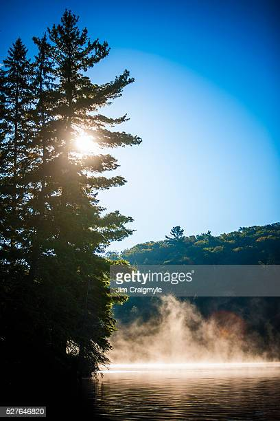 mist on lake at sunrise - jim craigmyle stock pictures, royalty-free photos & images