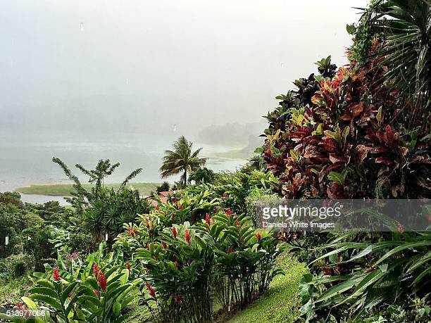 Mist over lake Arenal 1