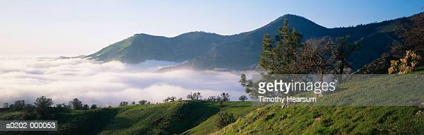 mist over valley - timothy hearsum stock-fotos und bilder