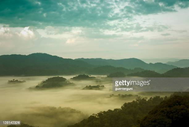 Mist rolling in on the rainforest of Rwanda in the morning