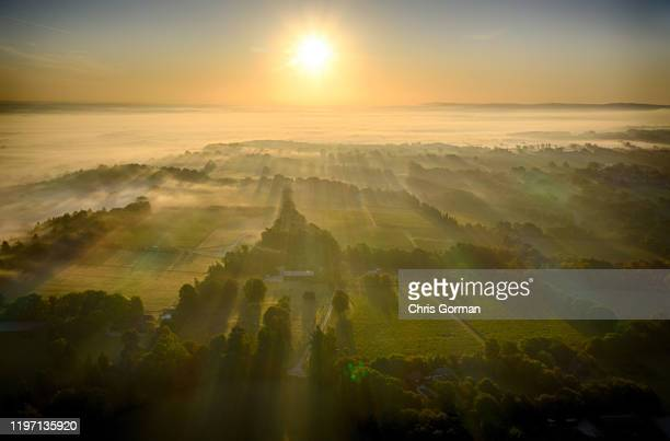 Mist rolls across The Nyetimber Vineyard on England's South Downs in September 2019 in Petworth, United Kingdom.