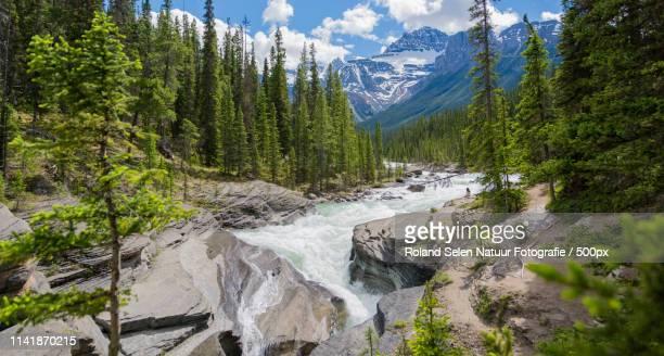 Mistaya Canyon (Jasper)