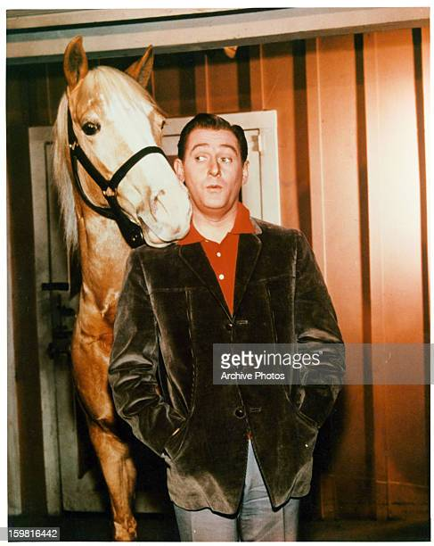 Mister Ed the talking horse and Alan Young in a scene from the television series 'Mister Ed' circa 1960