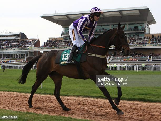 Mister Quasimodo ridden by Tom Scudamore going to post for the John Smith's Handicap Chase at Aintree