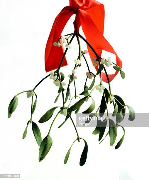 Mistletoe and a red ribbon