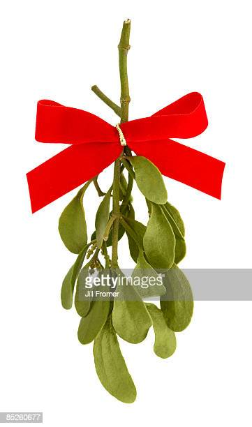 Mistletoe with Red Bow Ribbon on White