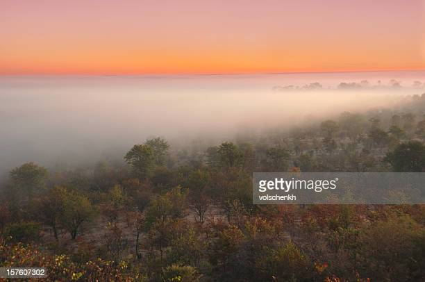 Misty African Sunrise