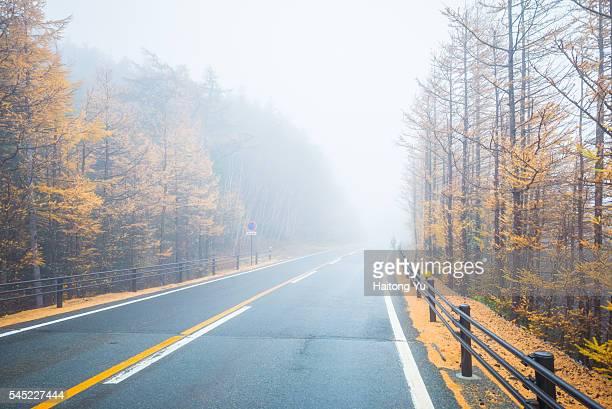 Misty autumn mountain road on Mt. Fuji, Japan