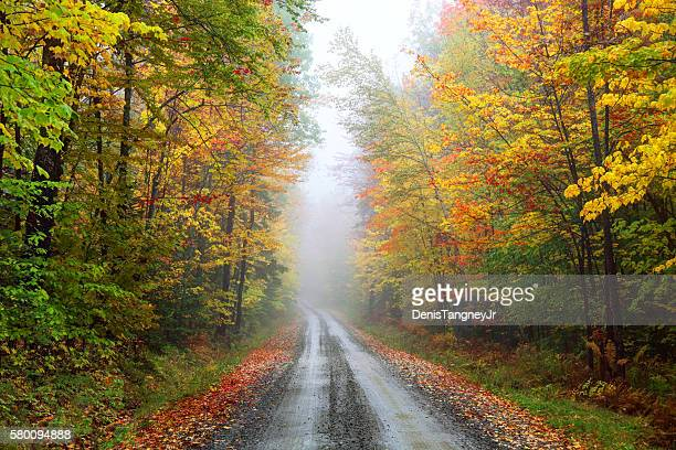 Misty autumn road in rural Vermont near Montpelier