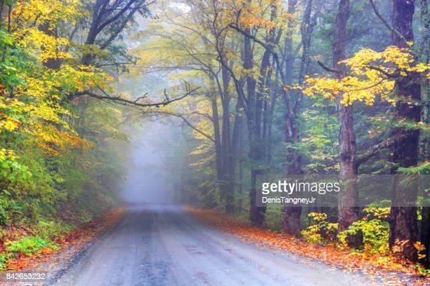 mistige herfst weg in landelijke vermont - montpelier vermont stockfoto's en -beelden