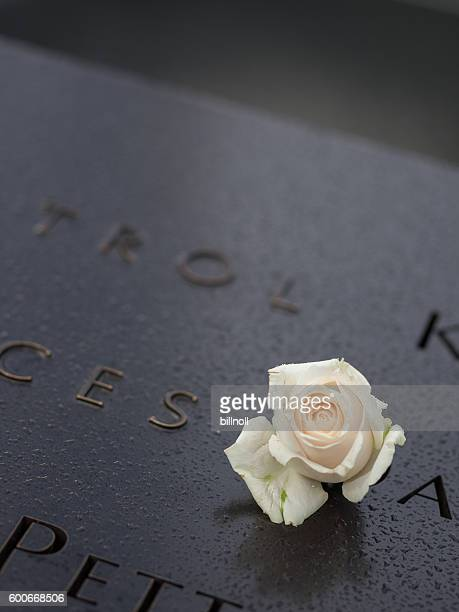 Misty blurred view of the 9/11 Memorial and memorial rose