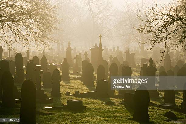 misty cemetery - cemetery stock pictures, royalty-free photos & images