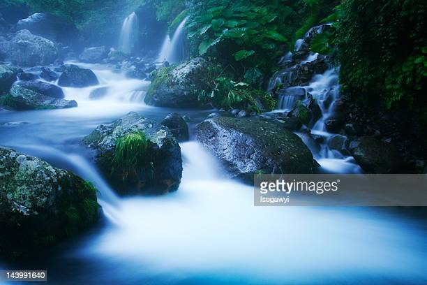 misty creek - isogawyi stock pictures, royalty-free photos & images