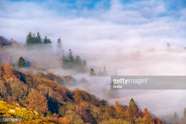 misty dawn in the english lake district national park - north west england stock pictures, royalty-free photos & images