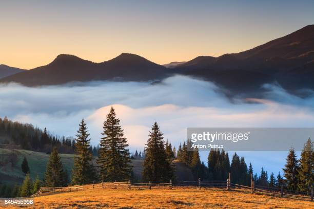 Misty dawn in the mountains in autumn