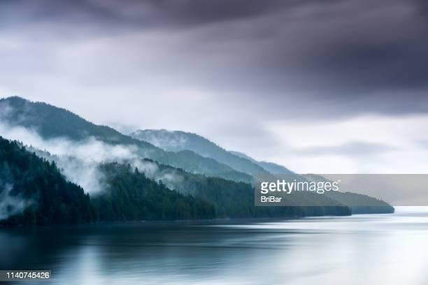misty fjord shoreline, alaska - paisajes de alaska fotografías e imágenes de stock