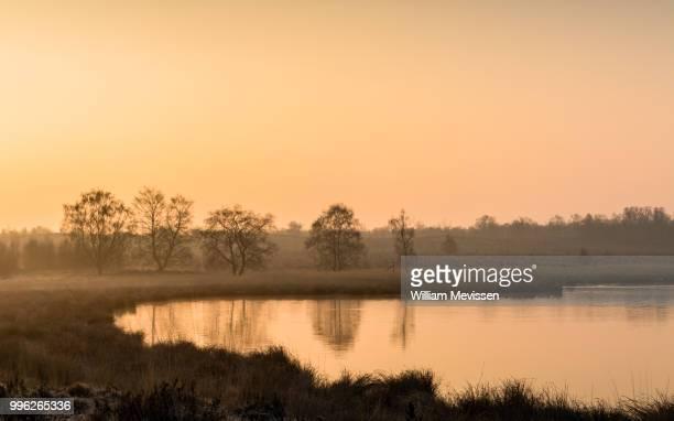 misty glow - william mevissen bildbanksfoton och bilder