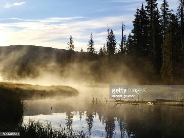 Misty amont de la rivière Deschutes au petit lac de lave, Oregon