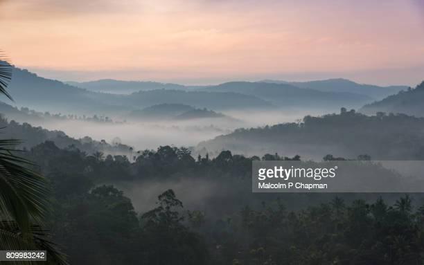Misty hills at sunrise near Munnar, Kerala, India