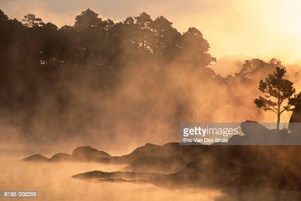 misty lake by forest - eric van den brulle stock pictures, royalty-free photos & images
