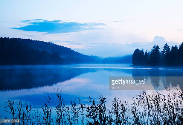 misty lake - lake stock pictures, royalty-free photos & images