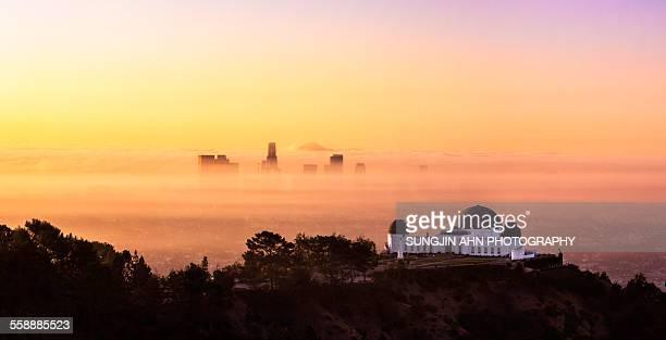 Misty Los Angeles