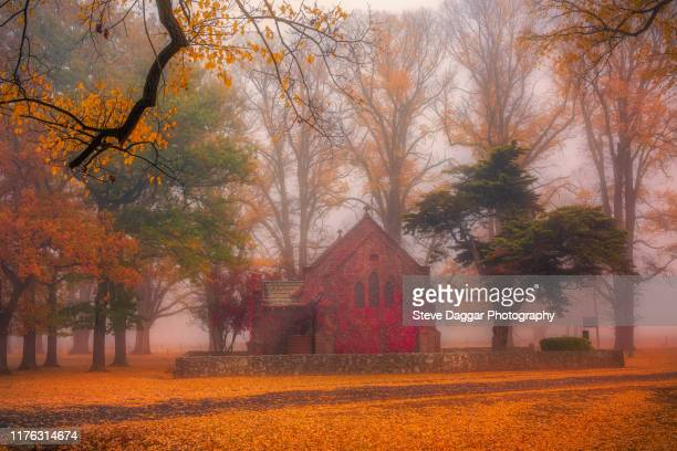 misty morning at gostwyck - uralla stock photos and pictures