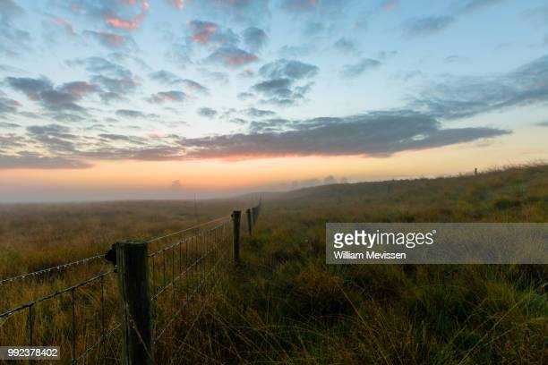 misty morning fence - william mevissen stock pictures, royalty-free photos & images