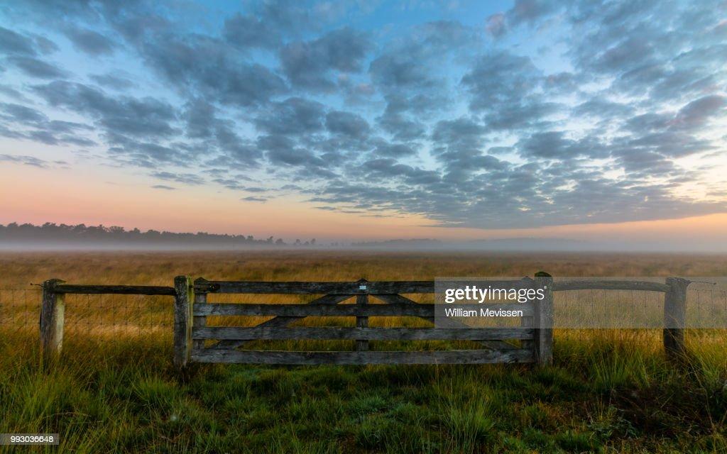 Misty Morning Gate : Stockfoto