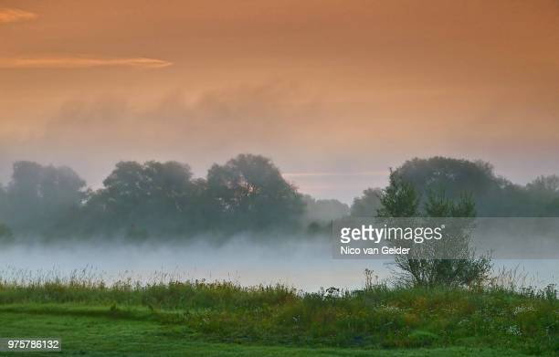 A misty morning on the borders of the IJssel