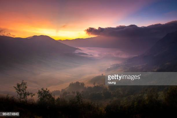misty morning - java stock pictures, royalty-free photos & images
