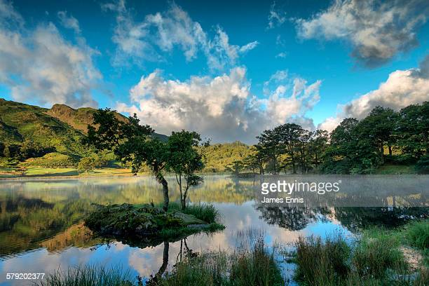 misty morning rydal water, english lake district - lake district stockfoto's en -beelden